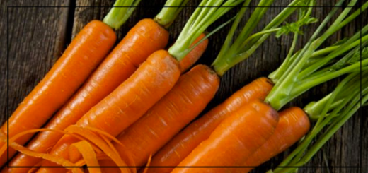 cenoura-site