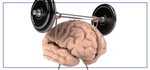 cérebro-site
